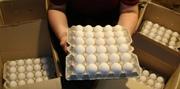Яйцо куриное продажа в СПб Лен. Обл. 2011