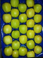 Яблоки польские опт