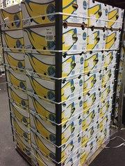 Бананы оптом. Прямые поставки от производителя. Эквадор