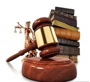 Консультация профессионального юриста